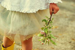 apple blossom love (Le Fabuleux Destin d'Amlie) Tags: flowers baby white flower detail apple nature girl leaves yellow shirt fairytale landscape 50mm one spring toddler child pentax blossom explore ap 23months pv multi tutu gumboots rainboots exploreflickr michelleblack ymamay magicvintage gj21