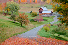 Autumn Painting (blypix) Tags: new autumn red england orange green fall yellow colorful vermont farm foliage sleepy 2008 hollow cloudland bly2k binhlyfineartforsale wwwblypixcom