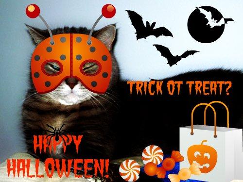 Happy Halloween from Othello