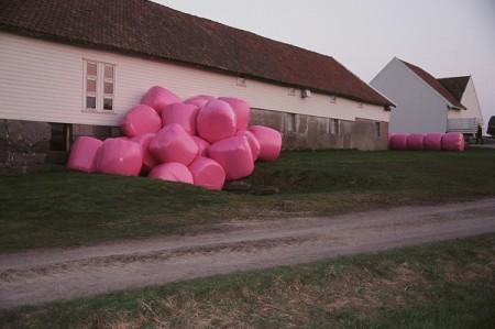 pinkheyballs1