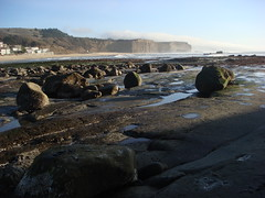 MartinsBeach_2007-063 (Martins Beach, California, United States) Photo