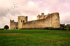 Trim Castle - Ireland (tigrić) Tags: autumn ireland castle flockofbirds countymeath trimcastle explore264