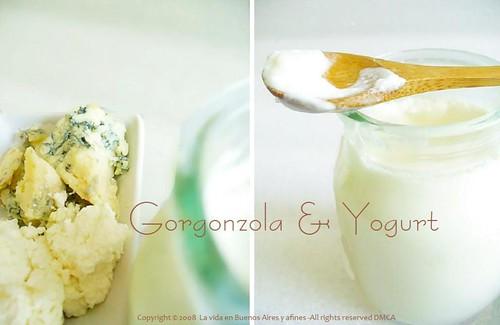 Gorgonzola & Yogurt