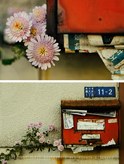 No-one's checking this mailbox, Minami-oi, Tokyo (Alfie | Japanorama) Tags: street city flowers red urban macro texture japan mailbox asian japanese tokyo rust asia mail box neglected rusty postbox rusting d300 myneighbourhood minamioi nikkor105mmf28afd