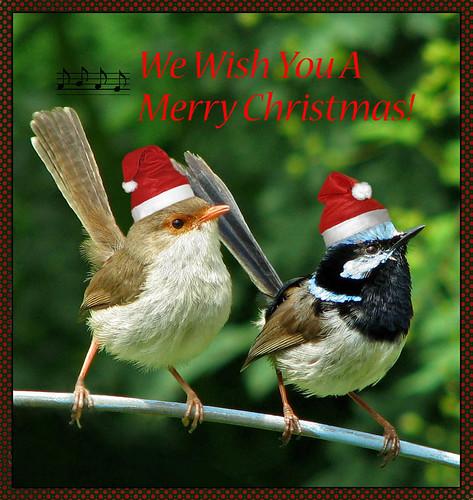 Merry Christmas -- From Australia!