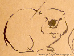 LA.Zoo sketch