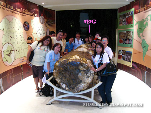 group photo with fossil wood