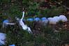 Jesus in the Weeds (dogwelder) Tags: california grave graveyard statue hollywood hollywoodforevercemetery february zurbulon6 2009 santamonicaboulevard zurbulon