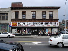 Original Products (2005)
