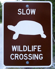 Slow Wildlife (be my butterfly) Tags: park brown sign yellow danger warning island typography crossing slow florida turtle wildlife sanibel