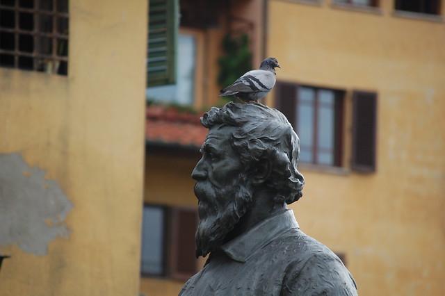 Bird bust