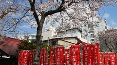 稲荷氷川神社