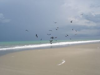 Ecuador-coastal-empty-beach