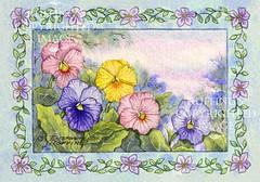 """""""Pansies"""" Original Watercolor Floral by Elizabeth Ruffing"""