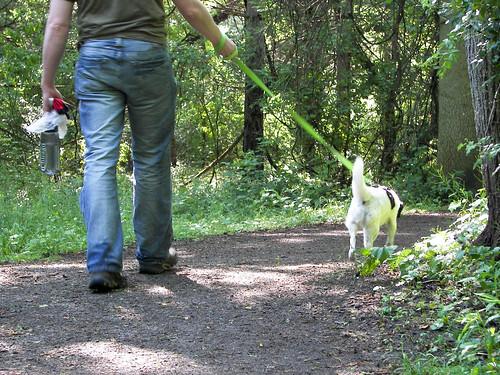 A dog and her Matt.