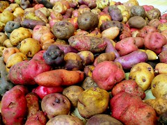 Svalbard seed vault to take Peruvian potato samples