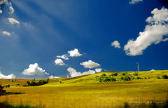 Delight (ladyLara ( Laura Blc )) Tags: blue trees summer sky sun white laura green nature beauty up field clouds hope gold fly nikon day wind joy free fresh hills romania grains d80 nikond80 ladylara laurabalc laurablc blc outstandingromanianphotographers