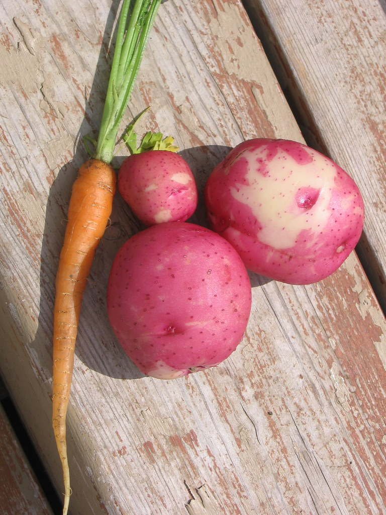 Baby Potatoes & Carrot