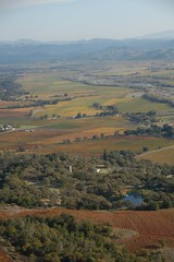 arial 018 (DiverDon) Tags: sonoma winecountry arial