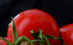 Tomato...... (rolfspicture) Tags: red macro tomato drops waterdrops picturesque tomaten foodphoto encarnado internationalfood smrgasbrod
