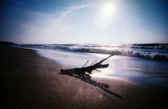 Contemplation (kevin dooley) Tags: favorite lake film beach beautiful analog 35mm wow coast interesting fantastic lomo lomography flickr pretty slim very good michigan gorgeous awesome wide shoreline award superior super best explore most shore winner stunning excellent much incredible eastern viv vivitar ultra breathtaking exciting newbuffalo phenomenal