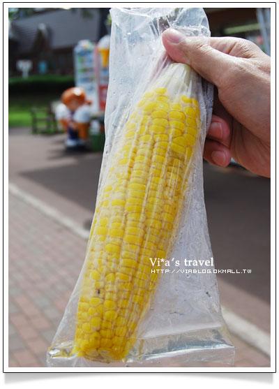 【夏の北海道】京極出水公園-超好吃北海道美食玉米+可樂餅