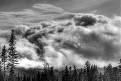 storm (Squid Vicious) Tags: bw clouds oregon fav50 canoneos20d mthood canonef2470mmlusm hdr mthoodmeadows fav10 photomatix mounthoodmeadows