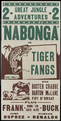 nabonga_tiger_fangs