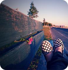 Randomnesssss* (jami_lee) Tags: pink blue flower tattoo bench shoes legs bored vans