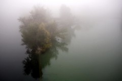 Trouble (edouardv66) Tags: trees mist color water fog 35mm switzerland nikon suisse geneva rhône explore nikkor genève brume arve jonction d700