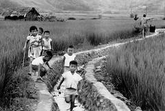 黑白童年-大家一起來