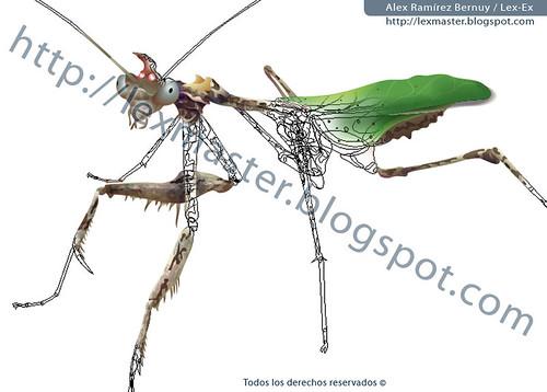 mantis religiosa sybilla pretiosa
