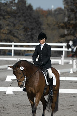 Lora finishes Dressage (rob.rudloff) Tags: horse dressage