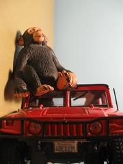 monkeeeee (Maʝicdölphin) Tags: macro canon toy toys monkey powershot rotation hummer a590