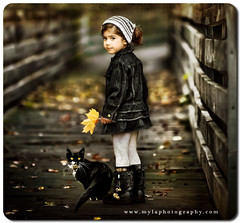 (mylaphotography) Tags: wood bridge autumn black art fall halloween scarf cat dark toddler boots jeans mylaphotography processedinlrps