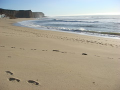 MartinsBeach_2007-005 (Martins Beach, California, United States) Photo