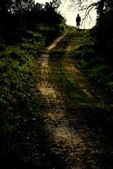 ([Charlotte]ThePhilosopher) Tags: nature silhouette easter natura sentiero vacanza umbria pasqua archivio euge passeggiata spulciandonellharddick