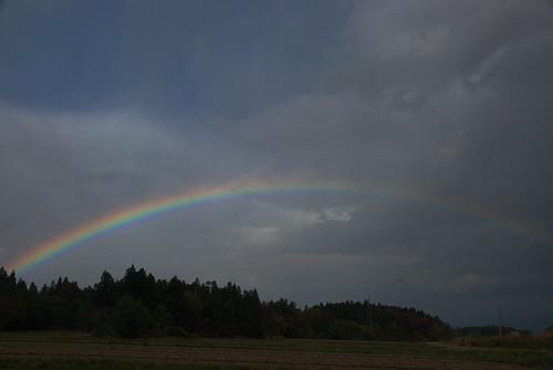 20081123072虹
