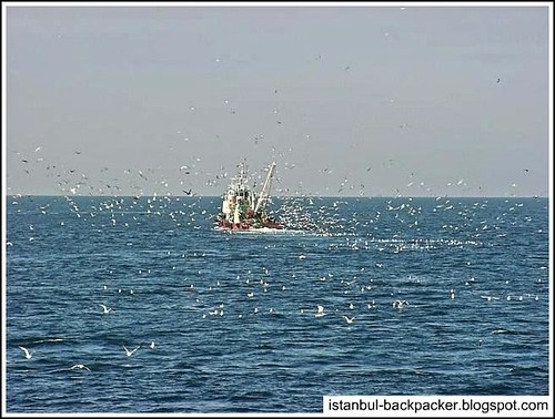 Fishing Boats at Marmara Sea