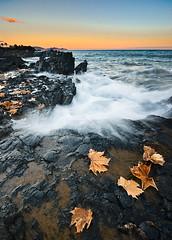 entre verano y otoo (SanchezCastillejo) Tags: beach hojas mar sony murcia verano otoo a700 percheles mywinners
