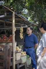 20081114-IMG_4581l (unknown8bit) Tags: trip family vacation fruits fruit philippines fruitstand quezon pilipinas rambutan lanzones