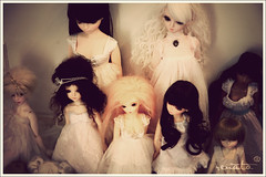 The mini ones (r e n a t a) Tags: blue yellow canon doll dolls cara tan may hobby sd ciel coco tiny heads miel lea bjd boneca yoko lumi fairyland addiction familypicture lami miyu msd noella tf bluefairy balljointeddoll latidoll coleo mnf pocketfairy f02 f01 30cm 12cm 60cm lati narae musedoll tinyfairy yisol supia 43cm minifee 16cm dollga narindolls limitedcatversion limitedhkelf limitedrabbitversion