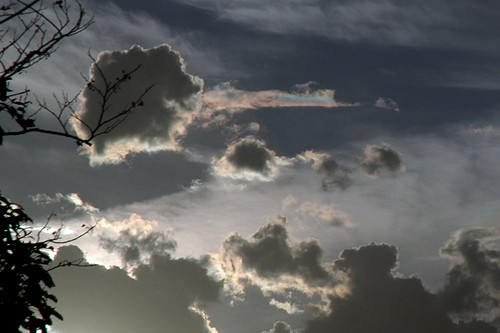 Evening Clouds 3