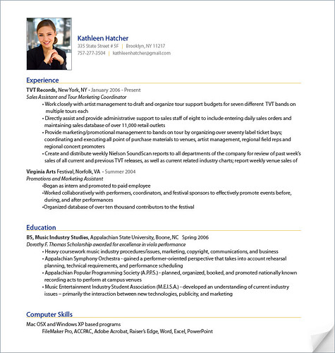 example of a professional cv write my resume for me sample template example ofbeautiful free cv examples templates creative downloadable fully cv templates. Resume Example. Resume CV Cover Letter