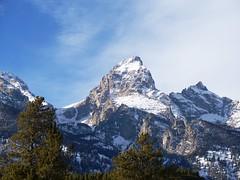 The Grand Teton (Marcroft) Tags: park trees winter mountain snow cold national wyoming teton range grandteton the