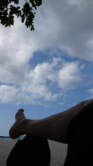 하늘과 내 발
