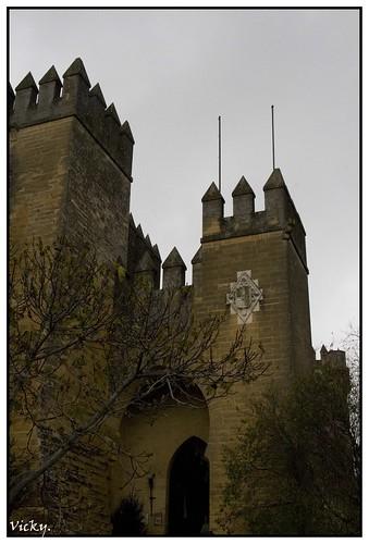 Castillo-Almodovar6