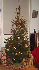 Christmas Tree 2008 3 (radiowood) Tags: christmas sweden stockholm lidingö