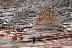 Coyote Buttes Paria Canyon-162 (Jonohey) Tags: arizona landscape utah sandstone redrock thewave southwestusa pariacanyon coyotebuttes vermillioncliffs pariaplateau