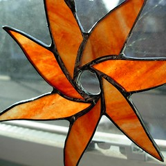 orange star flower
